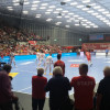 Handball-Bundesliga in Ludwigshafen
